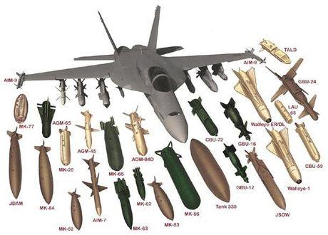 Me man vu khi tiem kich F/A-18 Viet Nam co the mua - Anh 1