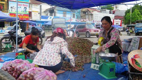 Khach du lich ngo ngang voi man Tam Hoa Bac Ha vao mua chin do - Anh 6