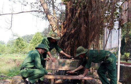 Huong den ky niem 69 nam ngay Thuong binh - liet sy (27/7/1947 - 27/7/2016): Nga ba Dong Loc – Ruc chay ngon lua vinh hang - Anh 8