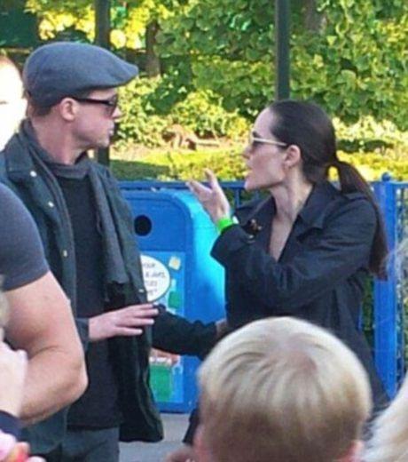 Hai lan Brad va Angelina lo anh cai va trong 2 nam ket hon - Anh 7