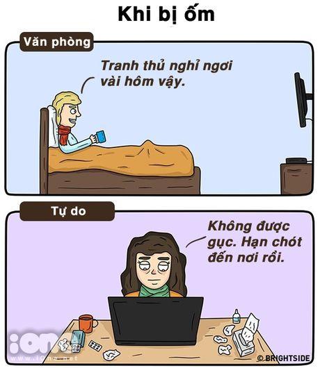 Freelancer va nguoi lam van phong suong kho khac nhau the nay day - Anh 12