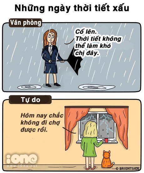 Freelancer va nguoi lam van phong suong kho khac nhau the nay day - Anh 9