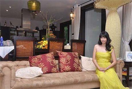 Toan canh biet thu nha vuon tri gia hon 400 ty cua hoa hau Ha Kieu Anh - Anh 11