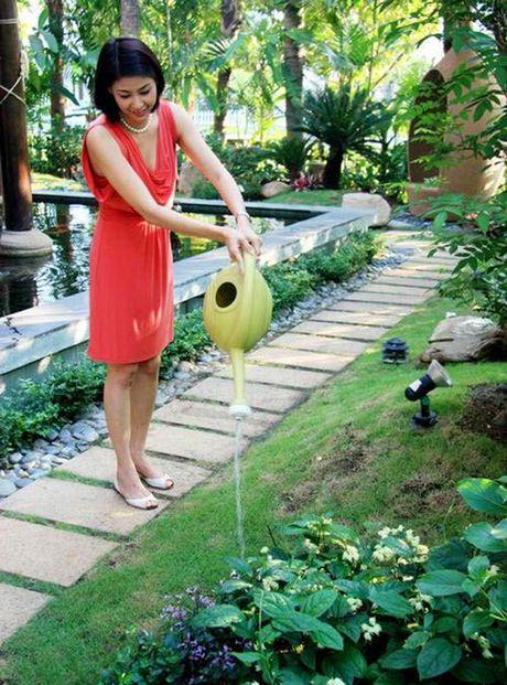 Toan canh biet thu nha vuon tri gia hon 400 ty cua hoa hau Ha Kieu Anh - Anh 6