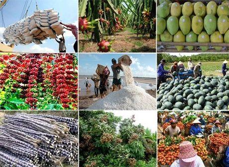 World Bank dua ra kich ban nong nghiep Viet Nam 2030 - Anh 1
