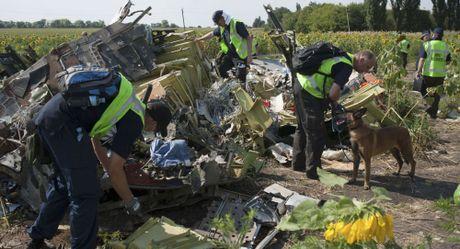Cuoi 2016, cong bo danh tinh nghi pham MH17: Bi mat se duoc bat mi? - Anh 1