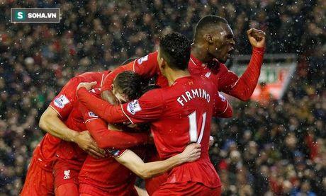 Trong cay duoi gam cau va chuyen song duoi gam cua Liverpool - Anh 3