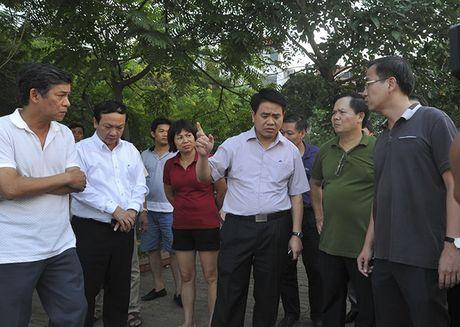 Nguoi dan khong su dung ca chet o ho Tay lam thuc pham - Anh 2