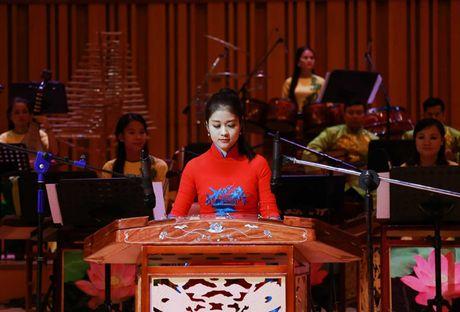 Sao Mai Le Anh Dung 'da nham san' sang Nhac cu truyen thong - Anh 12