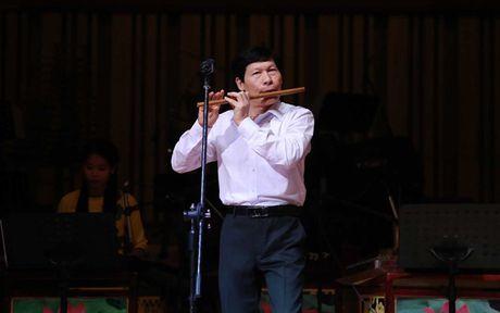 Sao Mai Le Anh Dung 'da nham san' sang Nhac cu truyen thong - Anh 4