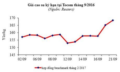 Xuat khau cao su sang Trung Quoc van tang manh - Anh 2