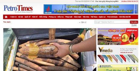 Cach chuc TBT, thu hoi the nha bao cua ong Nguyen Nhu Phong - Anh 1