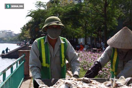 Nguoi Ha Noi khon kho sau khi ca chet noi trang Ho Tay - Anh 4