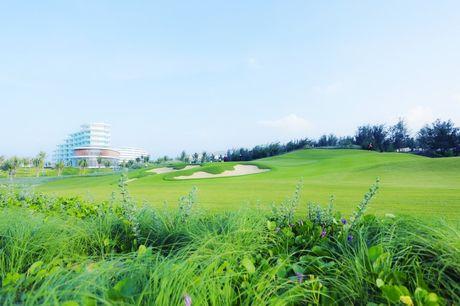 "An tuong ""vo tien khoang hau"" tai giai FLC Golf Championship 2016 - Anh 3"