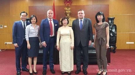 Thu truong Ho Thi Kim Thoa tiep Pho Quoc vu khanh Bo Ngoai giao va KTDN Hungary - Anh 1