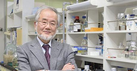 Giao su Nhat nhan giai Nobel Y hoc 2016 - Anh 1