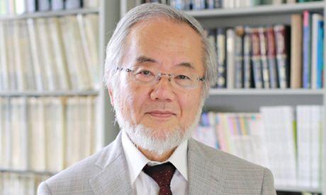 Nha khoa hoc Nhat Ban doat giai Nobel y hoc nam 2016 - Anh 1