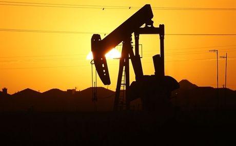 Gia dau len cao nhat 3 thang thi truong lac quan ve OPEC - Anh 1