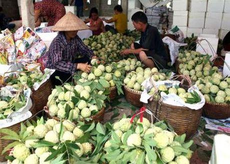 Thuong hieu thuc pham Viet van mo nhat tren the gioi - Anh 1