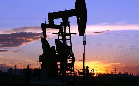 Gia dau giam nhe do hoai nghi ve hieu qua thoa thuan OPEC - Anh 1