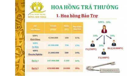 Them cong ty da cap bi thu hoi giay phep hoat dong - Anh 1