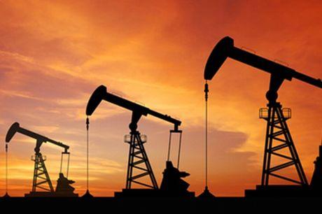 Su tham du thoa thuan cua cac nuoc ngoai OPEC se cat giam 1,2 trieu thung/ngay - Anh 1