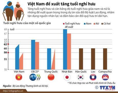 Viet Nam de xuat tang tuoi nghi huu - Anh 1
