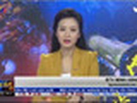 Phien chieu 5/10: Bo ba FLC, ROS, KLF dua nhau tang tran - Anh 2