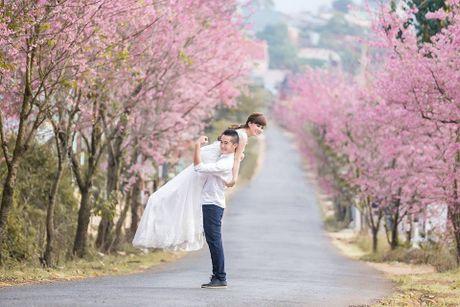 Da Lat lan dau tien to chuc Le hoi Hoa Anh dao - Anh 1