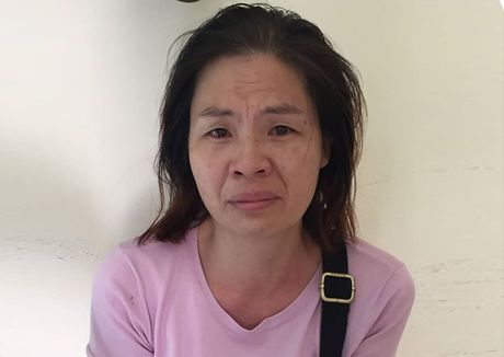 Hai nguoi Trung Quoc tiep tay cho nhom lua dao cong nghe cao - Anh 1