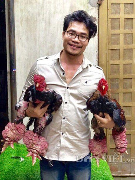 Chan Ga Dong Tao 'khung' co gia hang chuc trieu dong - Anh 1