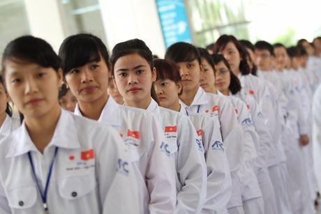 Lao dong Viet dang do giac mo lam dieu duong o Nhat sau 'su co TITP' - Anh 1
