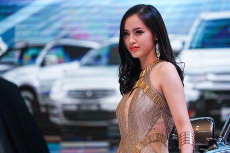 Bong hong to tham Trien lam o to Viet Nam 2016 - Anh 1