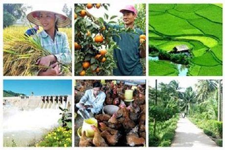 Giai toan cho nong nghiep Viet nam - Anh 2