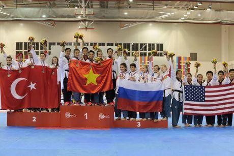 Taekwondo Viet Nam va uoc vong bay cao - Anh 4
