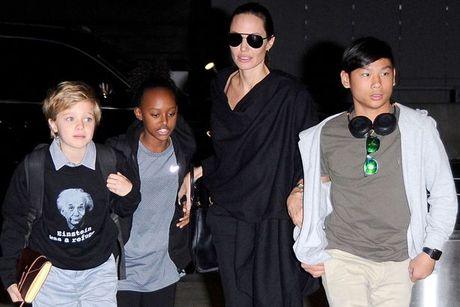 Angelina Jolie va cac con tri lieu tam ly de doi mat voi vu ly di dau long - Anh 1