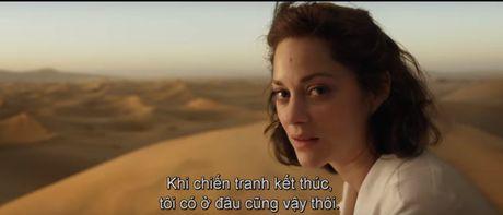"Fan cua Angelina Jolie se ""tuc dien"" khi xem canh Brad Pitt om ap ""tinh tin don"" - Anh 7"
