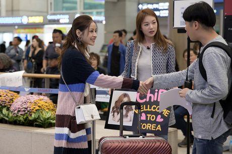 Chi Pu duoc A hau Han Quoc - Lee Sarah ra san bay chao don - Anh 5