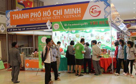 Khai mac Hoi cho thuong mai Viet Nam 2016 tai Campuchia - Anh 2