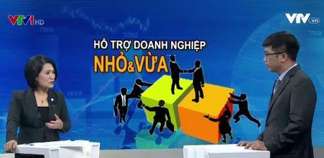"""Viet Nam khong giau de ho tro hoanh trang cho doanh nghiep nho va vua"" - Anh 1"