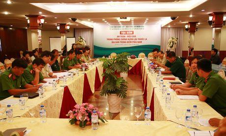 Tim giai phap chong buon lau thuoc la dia ban trong diem phia Nam - Anh 10