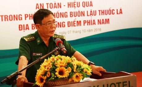 Tim giai phap chong buon lau thuoc la dia ban trong diem phia Nam - Anh 9