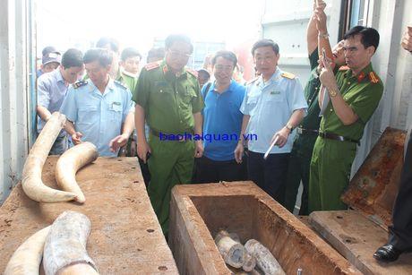 Lanh dao Tong cuc Canh sat va Tong cuc Hai quan thi sat vu bat giu hon 2 tan nga voi - Anh 3