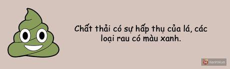 Xem hinh dang chat thai 'te nhi' biet ngay co the ban dang nhu the nao! - Anh 10