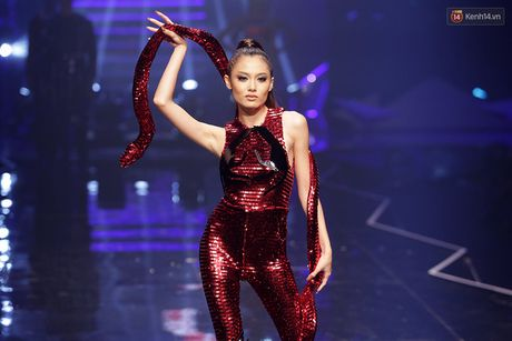 Lun thi da lam sao, 'beo' van co the thi Next Top Model day nay! - Anh 10