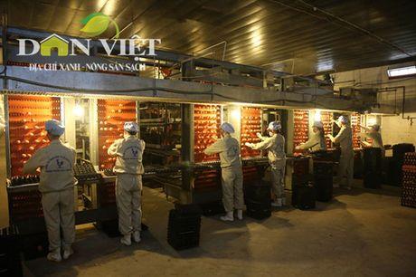 Hom nay (8.10), Le ky ket cung ung nong san thuc pham an toan dien ra tai Ha Noi - Anh 2