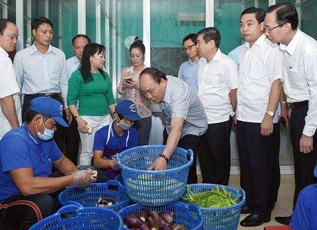 Thu tuong thi sat cong tac bao dam an toan thuc pham tai TP Ho Chi Minh - Anh 2
