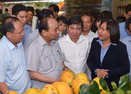 Thu tuong thi sat cong tac bao dam an toan thuc pham tai TP Ho Chi Minh - Anh 3