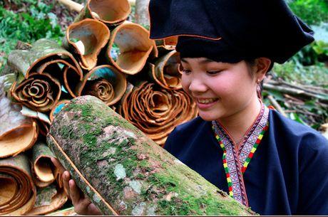 Ngot ngao huong que Van Yen - Anh 2