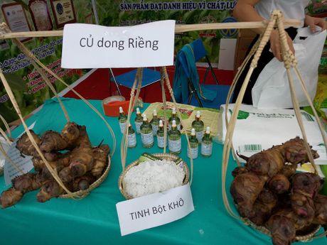 Nguoi tieu dung Ha Noi 'san lung' thuc pham sach tai 'phien cho xanh tu te' - Anh 23